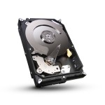 Seagate 1000 GB, ST1000DM010, 7200 U/min, SATA-600