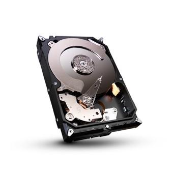 Seagate 4000 GB, ST4000DM004, 5400 U/min, SATA-600