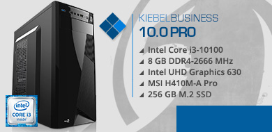 Business PC 10.0 pro