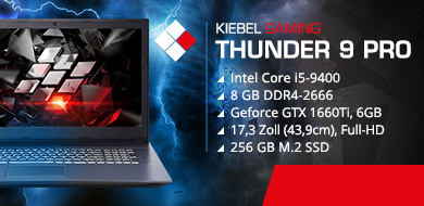 Gaming Laptop Thunder 9 Pro - 1660Ti (17.3)