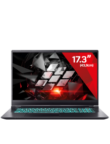 Gaming Laptop Raptor 11 Pro - 3070 (17.3)