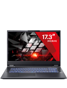 Gaming Laptop Raptor 10 Pro - 2060/70 (17.3)