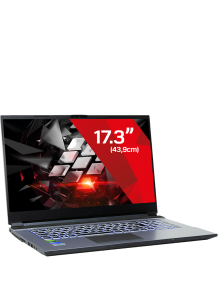 Gaming Laptop Hellfire 10 Pro - 1650 (17.3)