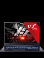 Gaming Laptop Ampere 10 Pro - 3060 (17.3)